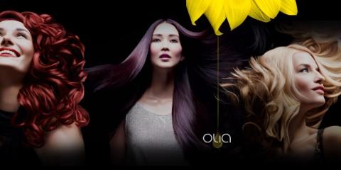 Barva na vlasy Garnier Olia
