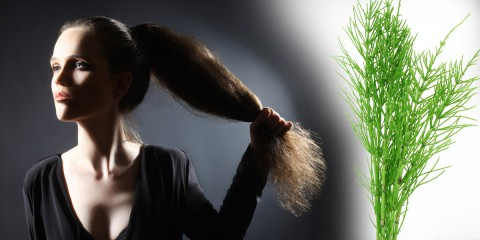 00-preslicka--rust-vlasu--tonikum--prirodni-pece-o-vlasy