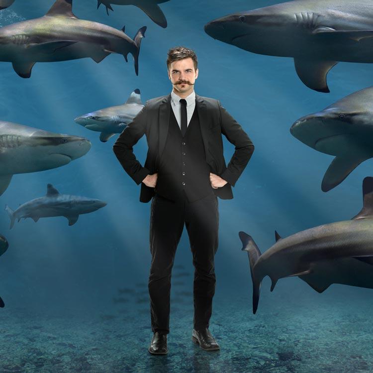 Buď žralok. Nech si narůst knír!