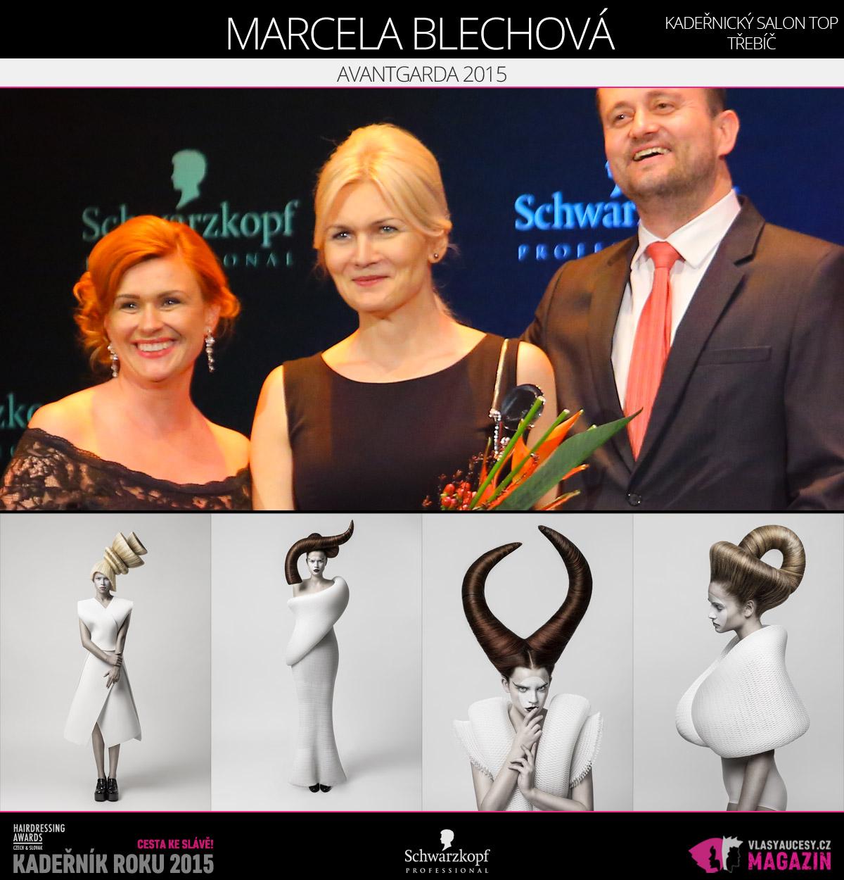 Vítězem v kategorii Avantgarda Czech and Slovak Hairdressing Awards 2015 je Marcela Blechová z kadeřnického salonu TOP v Třebíči.