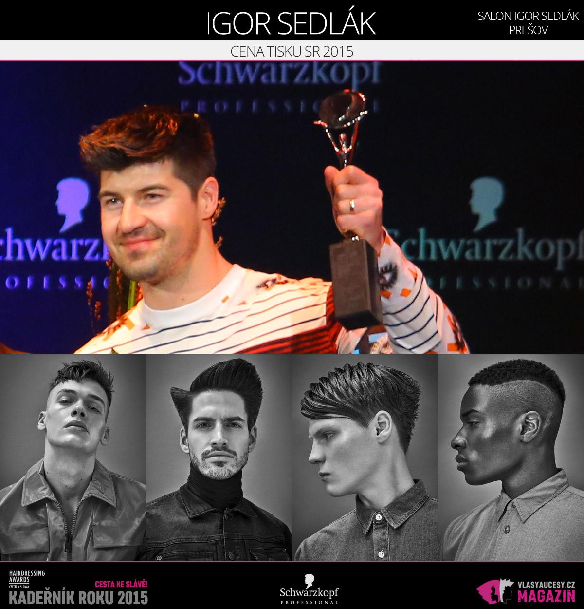 Vítězem v kategorii Cena tisku SR Czech and Slovak Hairdressing Awards 2015 je Igor Sedlák ze Salonu Igor sedlák Prešov.