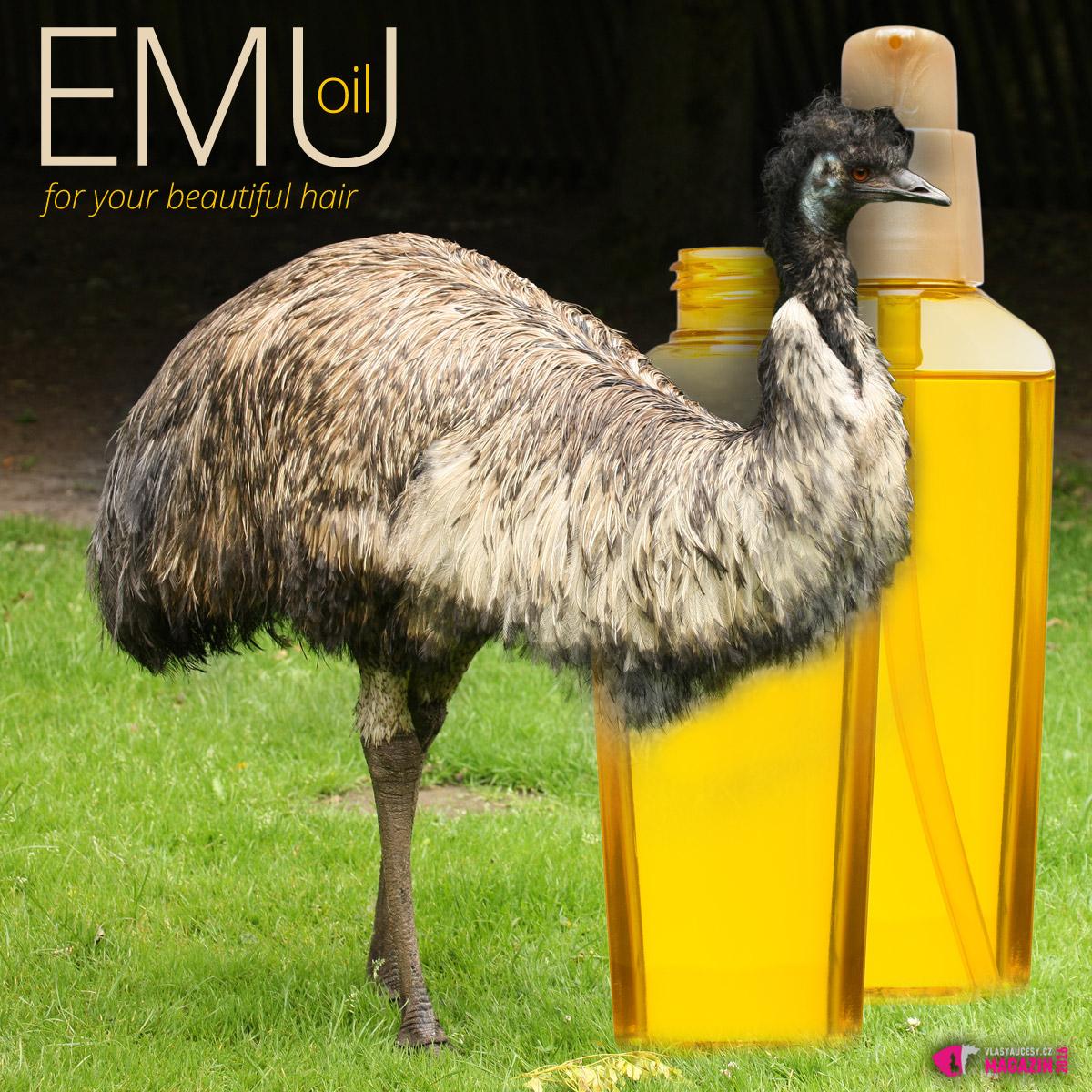 Emu olej je velkým pomocníkem proti vypadávání vlasů