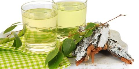 Březová voda je míza z břízy, která má mnoho pozitivních účinků na naše zdraví, krásu a vlasy. Na konci zimy si ji můžete nasbírat i samy.