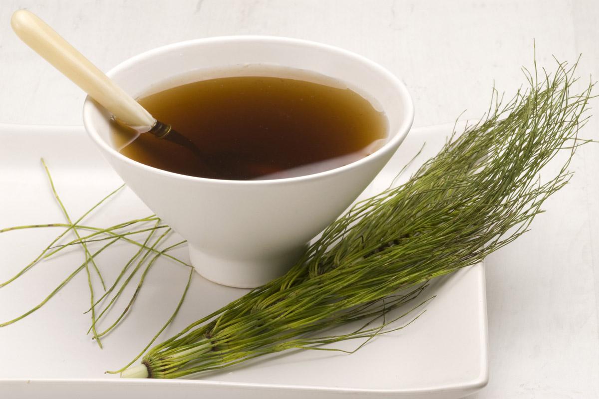 Přeslička je bylinka podporující růst vlasů. Vlasové tonikum si snadno připravíte i doma.
