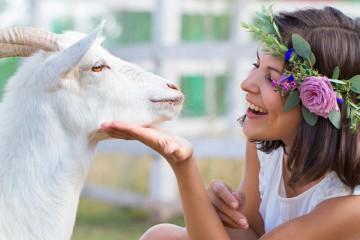 Kozí mléko je elixírem nejen pro vaše zdraví, ale i pro krásné vlasy.