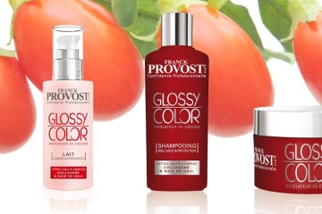 Franck Provost představuje novou řadu vlasové péče, která dodá vlasům lesk, zářivost a chrání barvu vlasů před blednutím. Hitem je CC krém na vlasy.