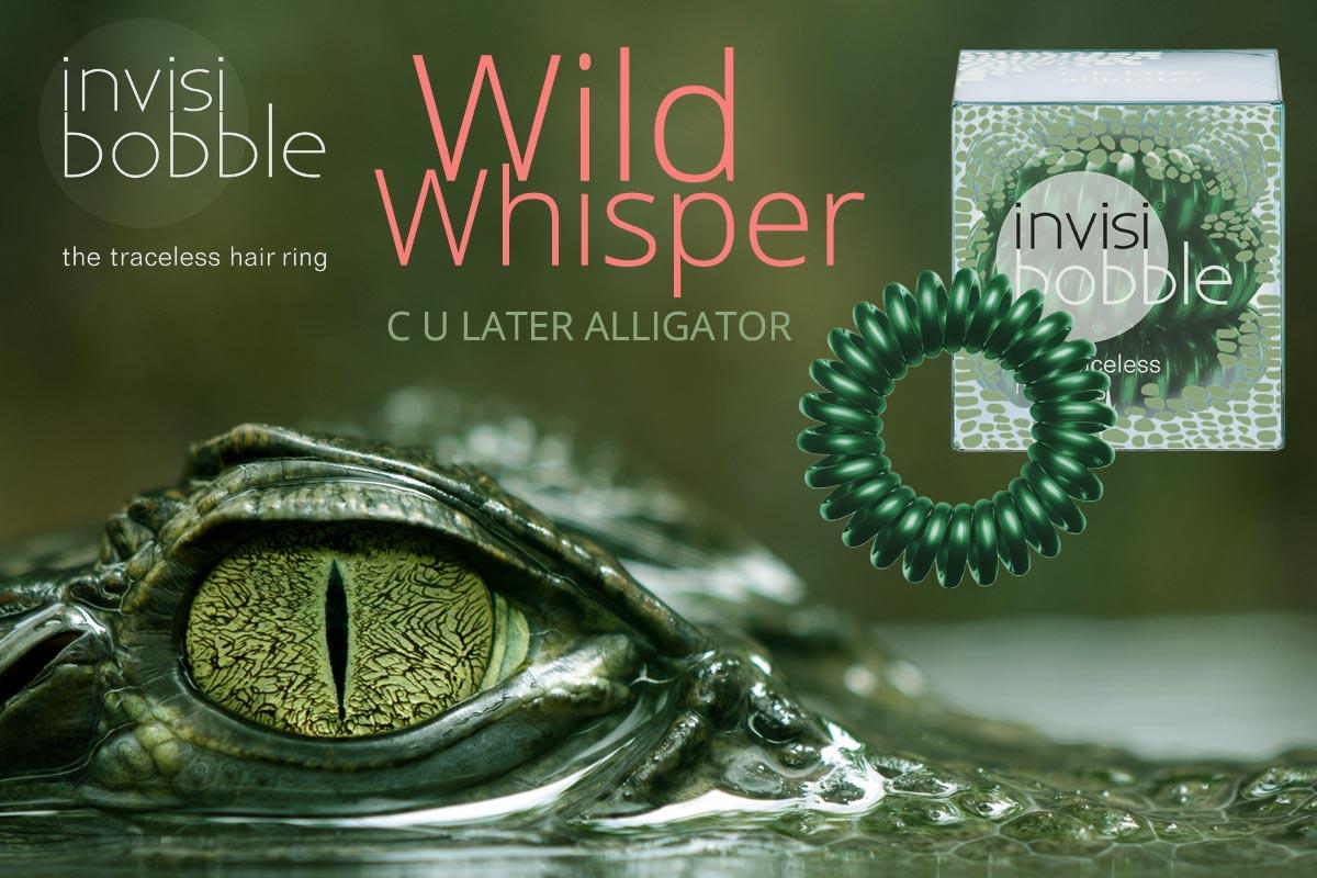 C U Later Alligator – Invisibobble gumičky Wild Whisper – limitovaná kolekce 2015 v úžasné aligátoří zelené