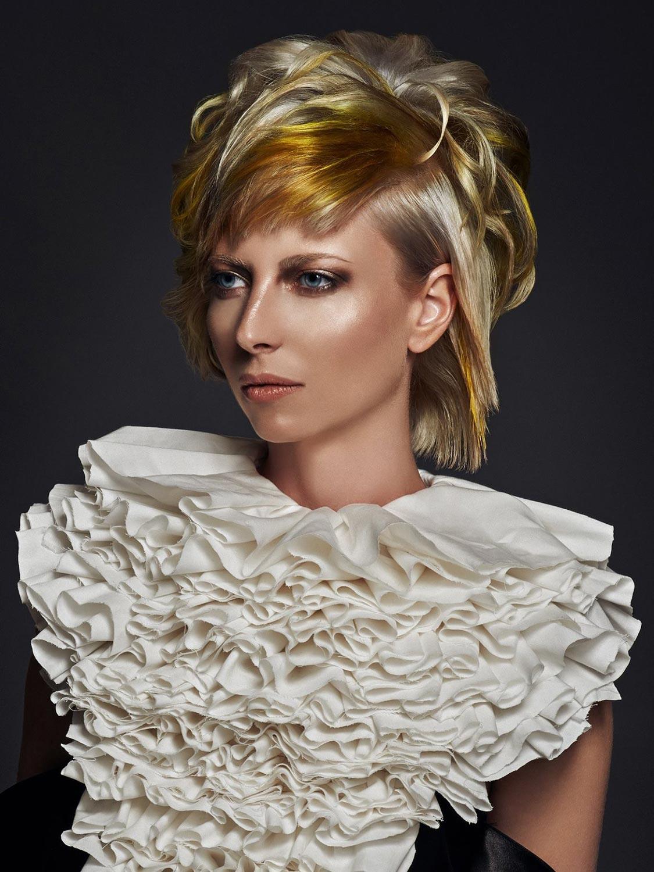 Libuše Baumruková, Vlasový ateliér Cheveux Libuše Baumrukové, Plzeň – nominace v soutěžní kategorii Color Zoom Collection 2015 GLOBAL CREATIVE COLORIST.