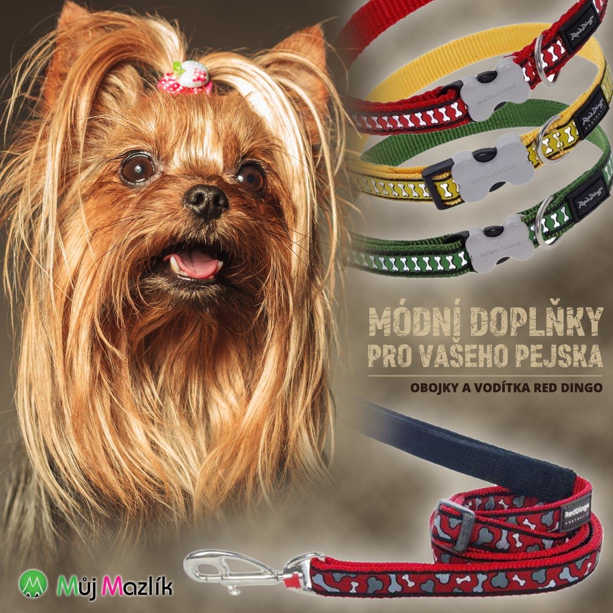 Pořiďte svým pejskům nádherné módní doplňky – obojky a vodítka značky Red Dingo! Prodává je e-shop s potřebami pro psy Mujmazlik.cz.
