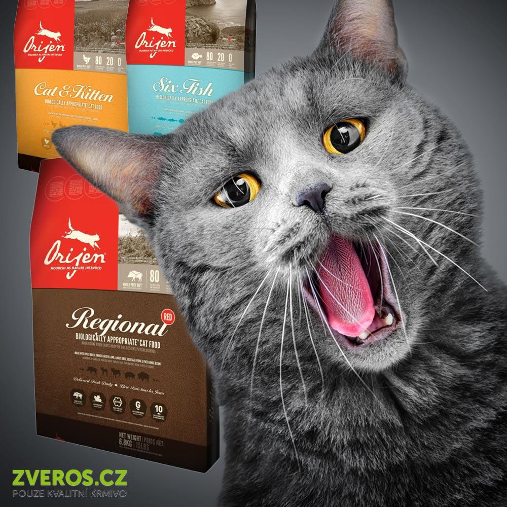 Kočka je v jídle vybíravá. Nejlepší je naučit ji na kvalitní granule a značku či dokonce typ vůbec neměnit.