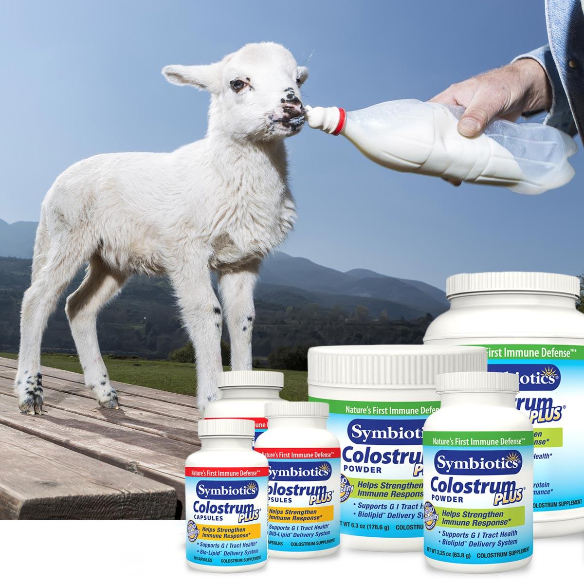Kolostrum se jako přírodní medikament často vyrábí z kozího mléka.