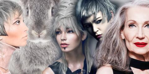 Jaká je barva roku 2016? Pro vlasy rozhodně šedá, nebo také stříbrná či šedivá. Z outsidera mezi barvami je hit pro všechny věkové kategorie!