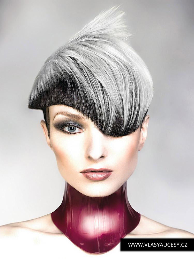 Šedivé vlasy v účesu od Robert Masciave (BHA 2016): Šedá je barva roku 2016 pro vlasy. Podívejte se, jak šedé vlasy ve dvou odstínech dokážou posloužit jako velice zajímavé barvení do střihu.