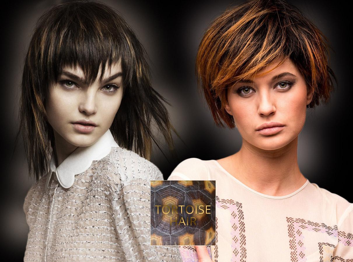 Barvy pro polodlouhé vlasy – trendy podzim/zima 2015/2016: Želvovinové vlasy – další variace pro hnědý melír.