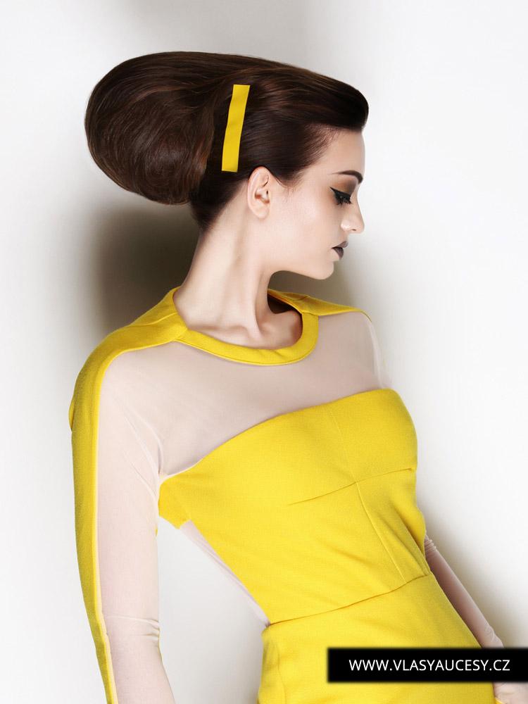 Dlouhé vlasy 2016 jako hladké drdoly a výčesy. (Thomas Hillan / British Hairdressing Awards 2015)