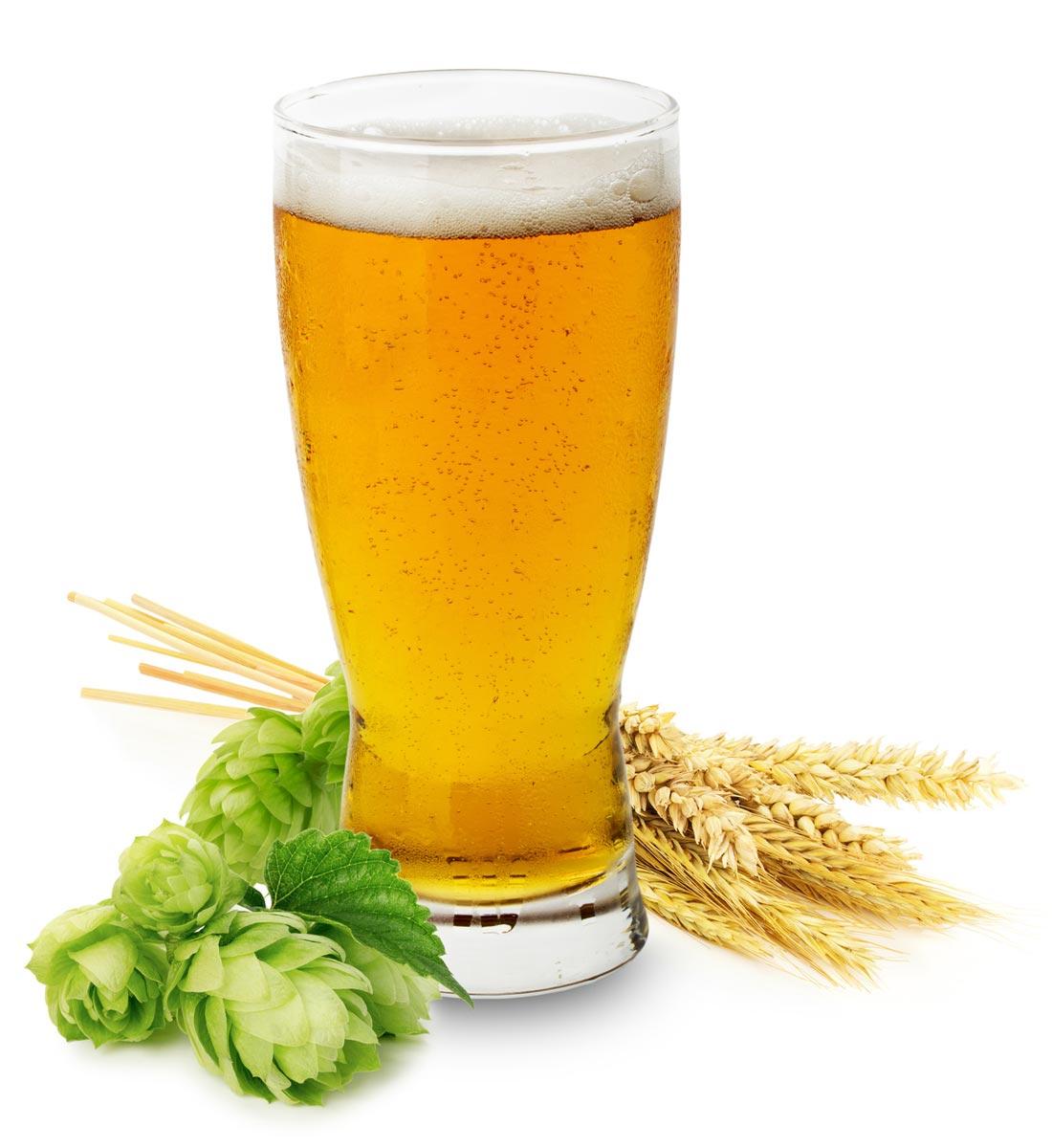 Pivo pro vlasy poslouží jako tužidlo i na zvýšení lesku vlasů.