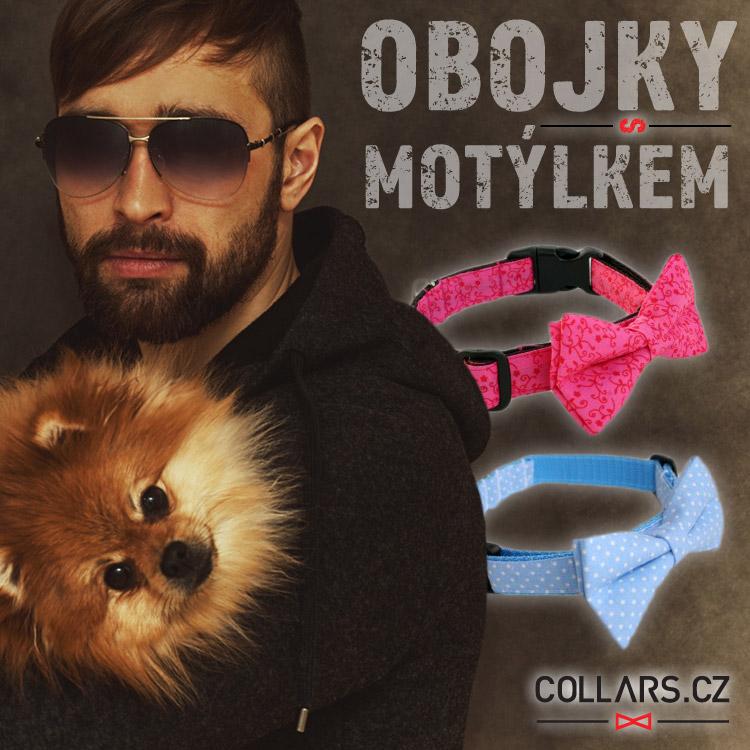 Hipsterská móda zasáhla už i pejsky a kočky. Pořiďte svému pejskovi obojek s motýlkem.