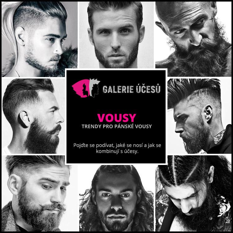 Velká fotogalerie vám představí trendy pro pánské vousy. Pánská móda jim opět přeje. Pojďte se podívat, jaké se nosí a jak se kombinují s účesy.