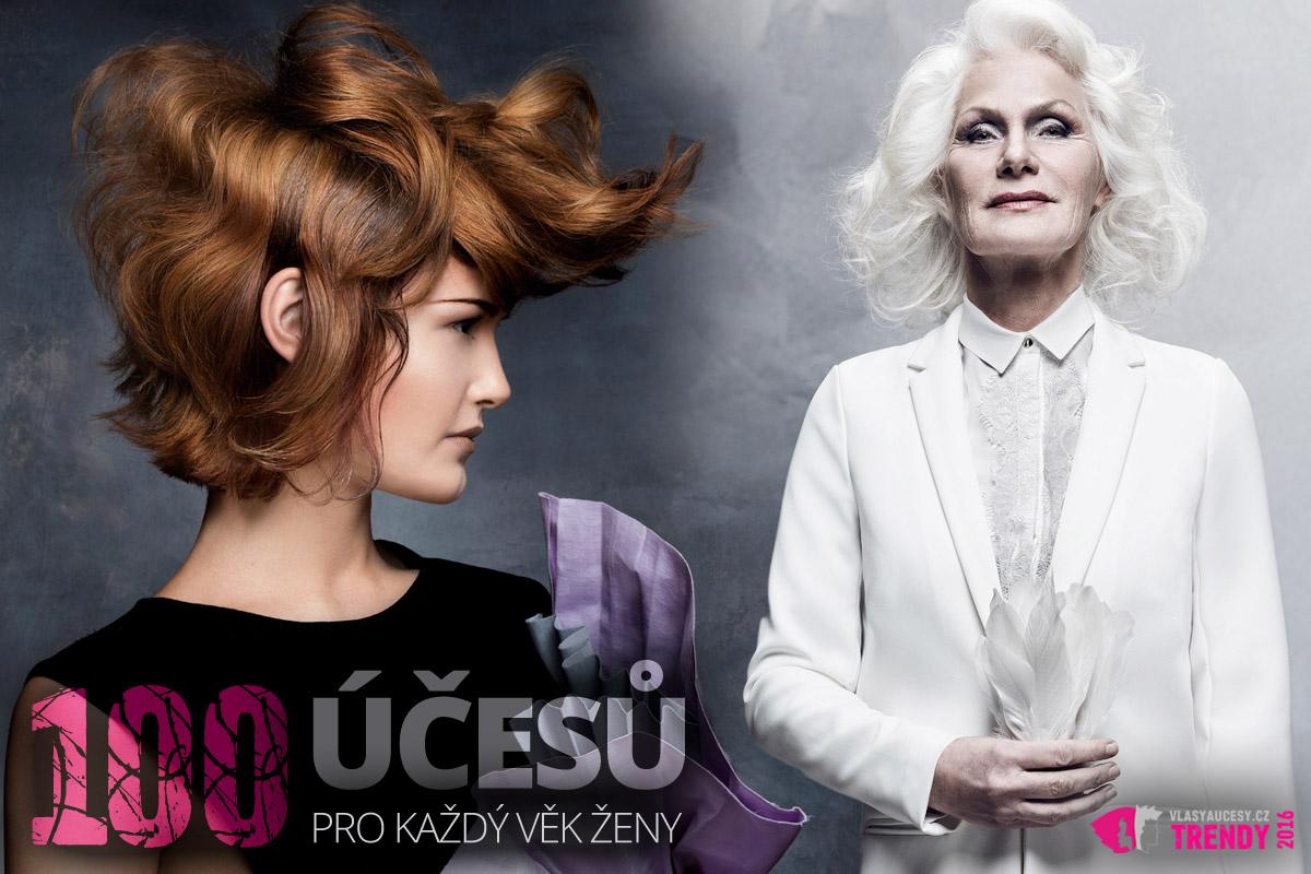 100 účesů pro každý věk ze světových hairdressing awards (Comtessa 2016 a Nederland Coiffure Award). Jde o nositelné účesy pro ženy v každém věku.