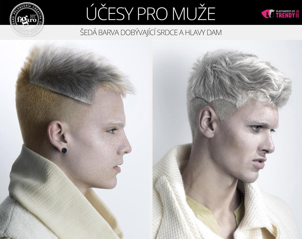 Barvy nekompromisně pronikají rovněž do pánských účesů. Třeba i v podobě šedé barvy na vlasy, která teď dobývá i srdce a hlavy dam. (Účesy pro muže: 2016 Fígaro Awards.)