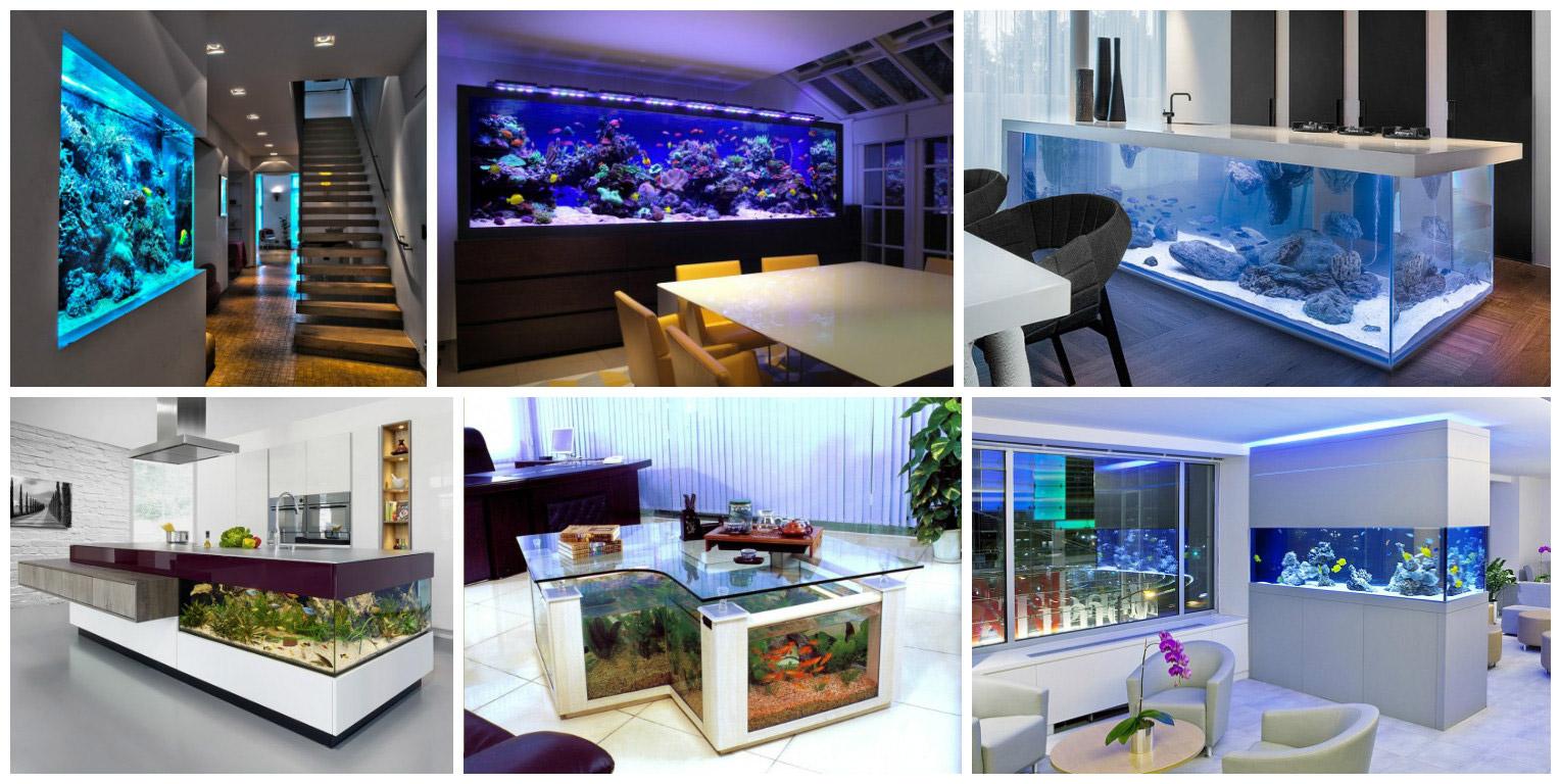 01-vivarium-aquarium