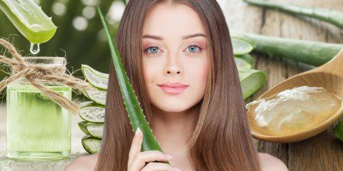 Aloe vera je skvělá léčivá rostlina. Víte, že své uplatnění nachází i v péči o vlasy a vlasovou pokožku? Jak tedy naložit s účinky Aloe pro vlasy?