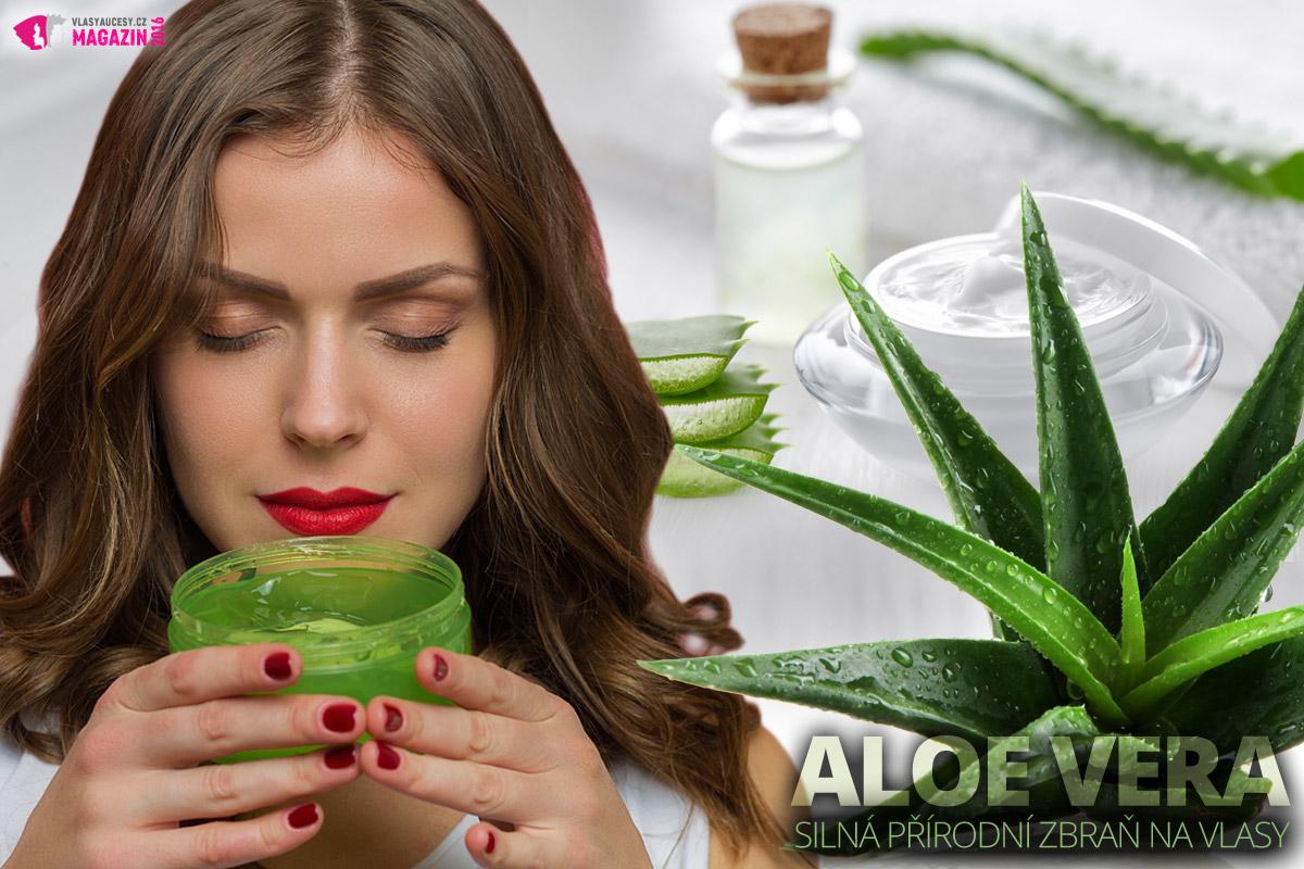 Vlasová kosmetika z Aloe vera dostane vaše vlasy a vlasovou pokožku do kondice.