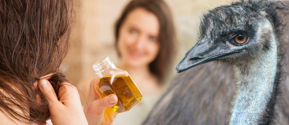 V zkrášlovacích kúrách sázíme obvykle na rostlinné oleje. Víte ale, že proti vypadávání vlasů a zlepšení jejich růstu skvěle funguje Emu olej?