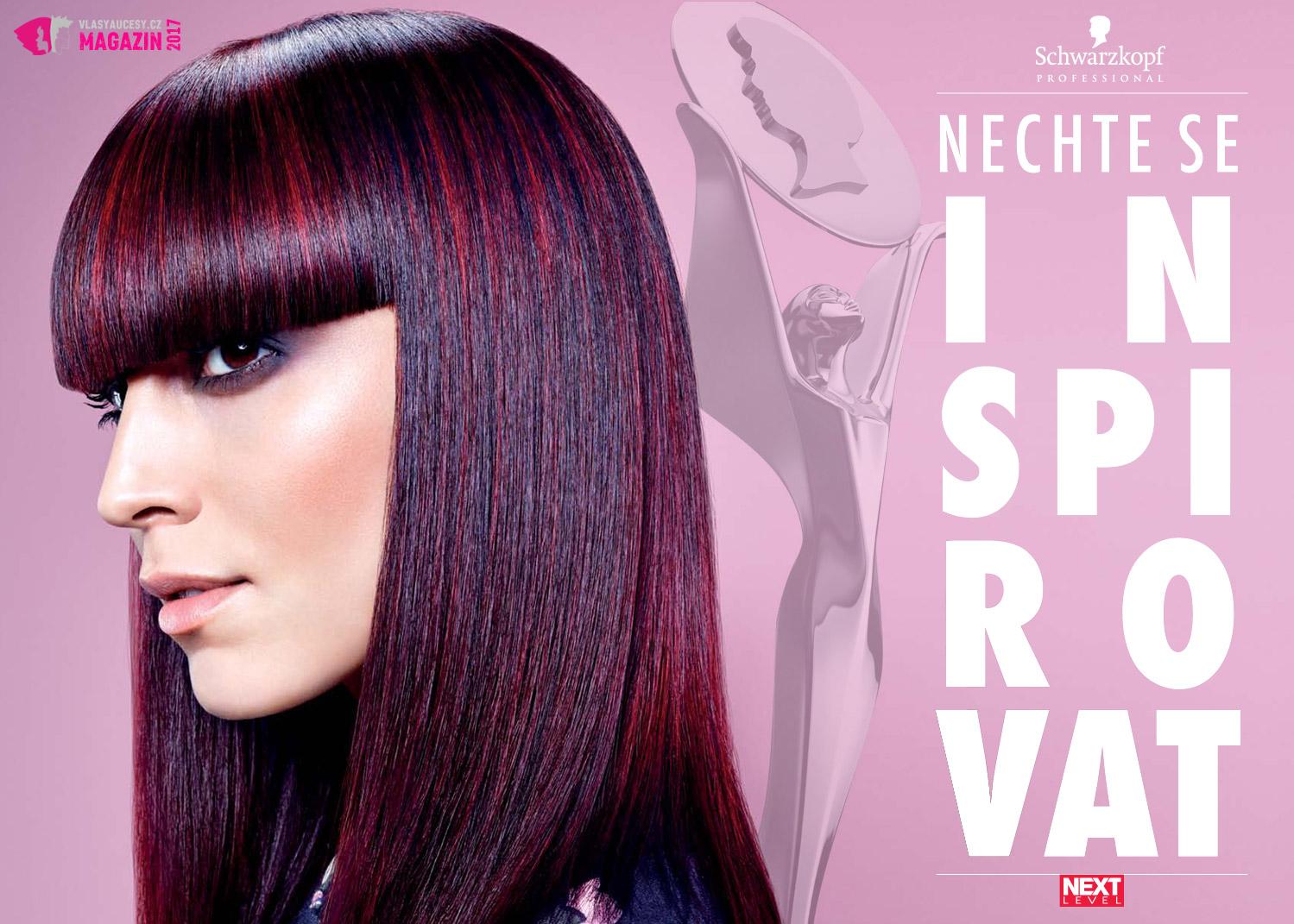 Dejte nový směr své kariéře díky účasti či dokonce umístění v soutěži Czech & Slovak Hairdressing Awards Next Level 2017.