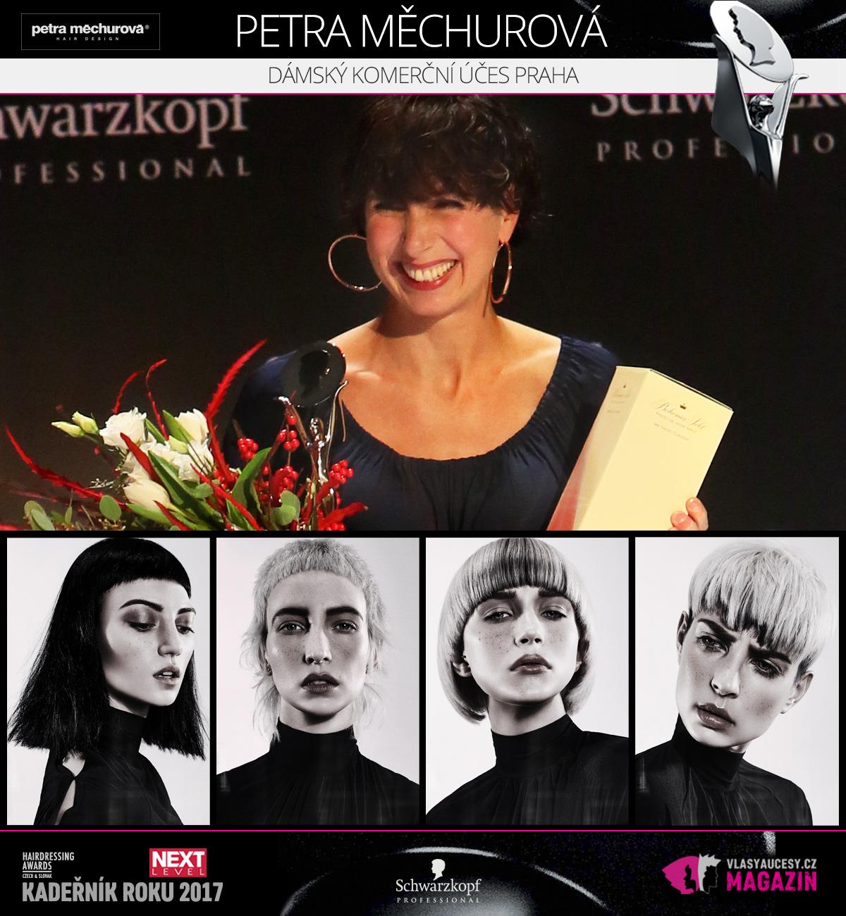 Petra Měchurová (Salon Petra Měchurová) – Dámský komerční účes Praha 2017 soutěže HDA – Kadeřník roku 2017.