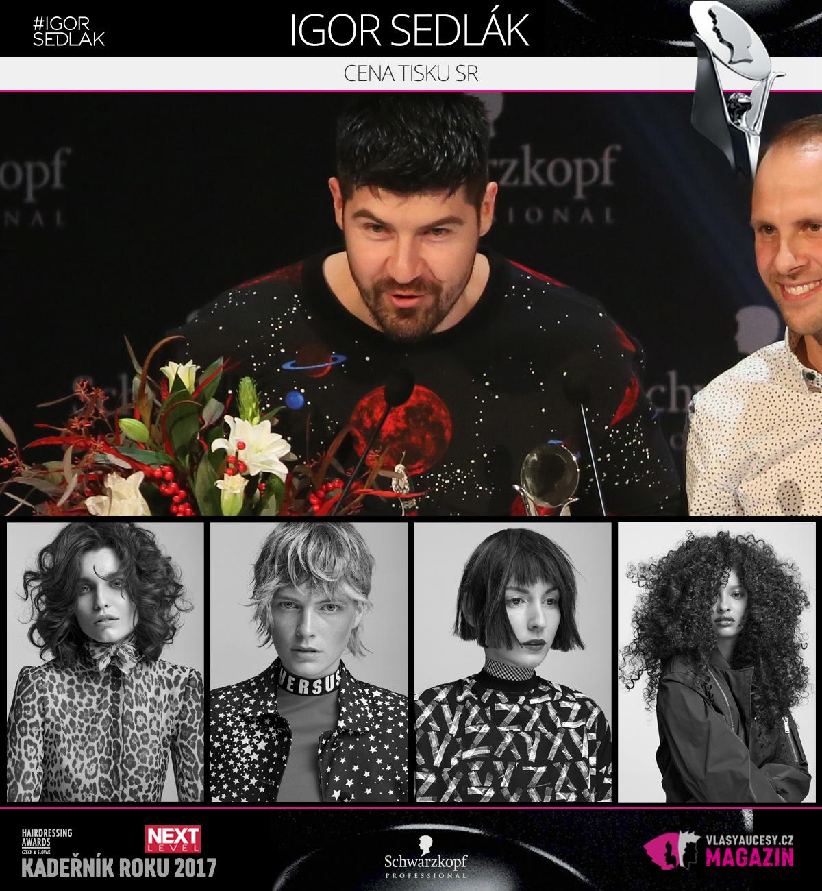 Igor Sedlák (Salón Igor Sedlák) – Cena tisku SK 2017 soutěže Czech&Slovak Hairdressing Awards.