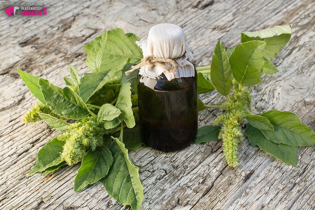 Skvalen, který je nejcennější částí amarantového oleje, je důležitý pro udržení hydratace pokožky hlavy a vlasů. Naše tělo produkuje mastné složky pro vlasovou pokožku a vlasy přirozeně. Ne vždy si je však umíme udržet. Teplo, prach, sluneční světlo a další faktory způsobují, že tyto přirozené oleje naše tělo ztrácí. Skvalen, který tvoří 7 až 8 % olejových částí amarantových semen, dokáže tyto potřebné látky našim vlasům přirozeně vrátit. Vlasy tak získají lesk a jsou chráněné proti lámání.