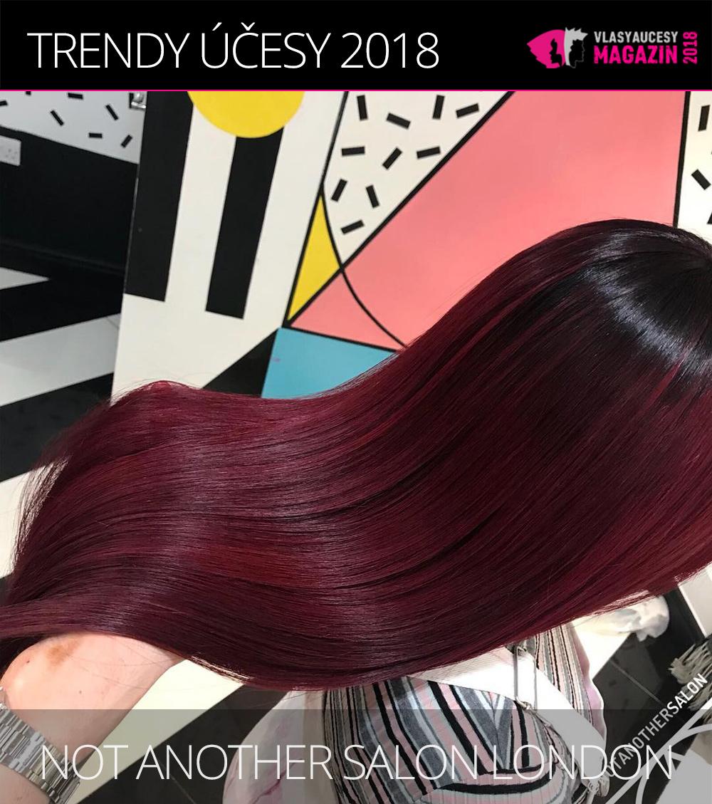 Největším hitem je pak tmavé podbarvení s do barvy procházející vrchnější vrstvy vlasového porostu. (Not Another Salon London)