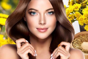 Podběl pro vlasy: funguje na mastné vlasy i proti padání vlasů