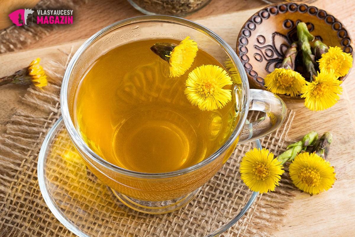 Výluh z podbělu na vlasy si připravíte stejně snadno jako podbělový čaj. Nezapomínejte do něj přidat nejen listy podbělu, ale i podbělové květy.