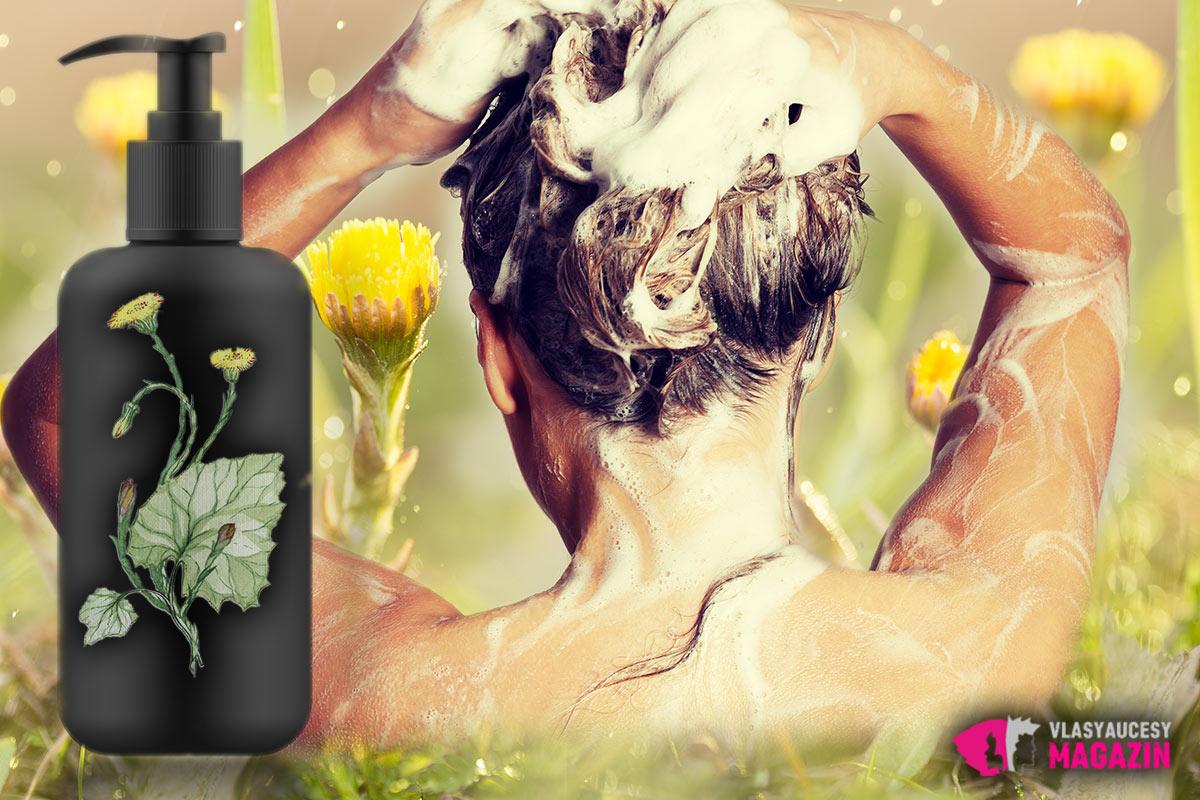 Podběl pro vlasy se používá i jako domácí podbělový šampon. Máme pro vás recept.